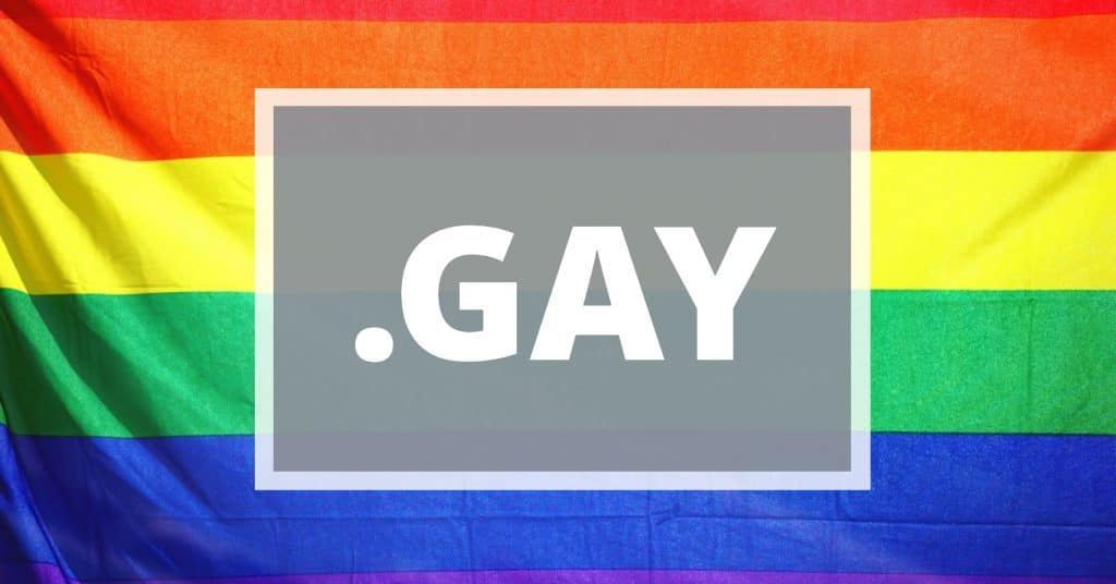 "Rainbow flag with the words "".gay"" on it"