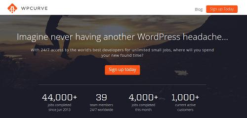 WordPress Developer - WP Curve
