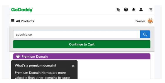 Screenshot of GoDaddy website with appship.co in the search box and Premium Domain definition below it.