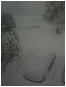 berryhill-snow2
