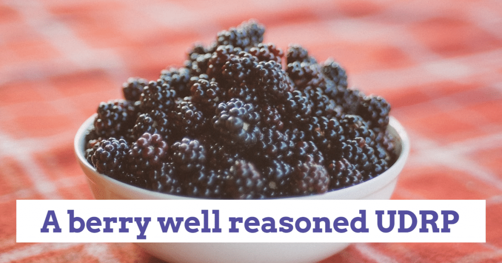 "Picture of a bowl of blackberries with the words ""A berry well reasoned UDRP"""