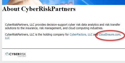 Screenshot of CyberRiskPartner's website