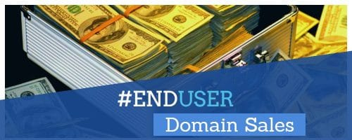 graphic of briefcase full of money related to end user domain name sales