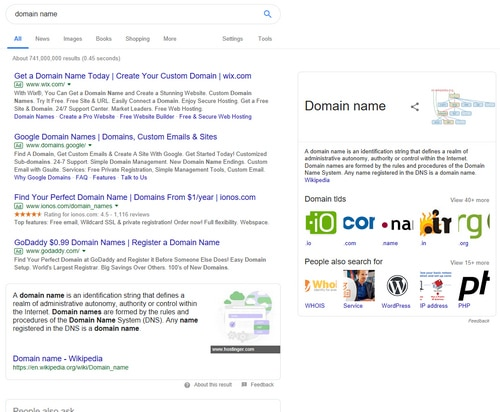 Google search results for the term domain name
