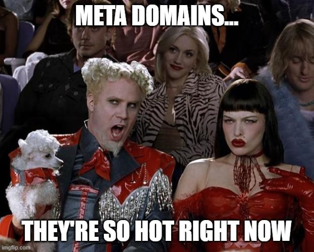 """Picture of Mugatu from Zoolander with the words """"Meta domains...they're so hot right now"""""""