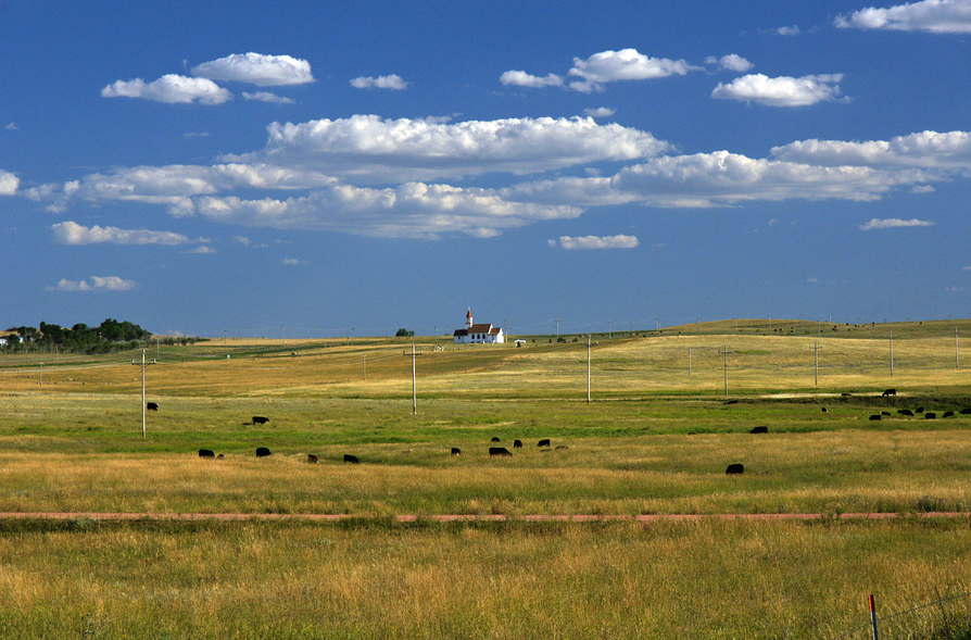 Picture of farmland in North Dakota. Prairies, cattle and a church with partly cloudy skies.