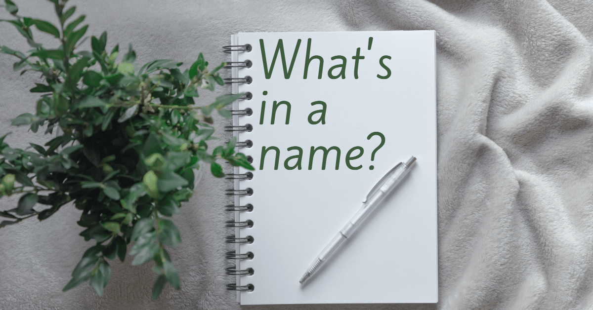 """Picture of a notebook with the words """"What's in a name"""". A green plant is to the left and a pen rests on the notebook."""